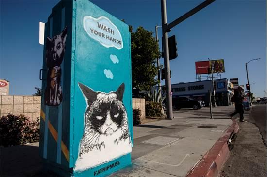 גראמפי קאט מחנכת לשטיפת ידיים בגרפיטי בלוס אנג'לס  / צילום: Ted Soqui/SIPA USA, רויטרס