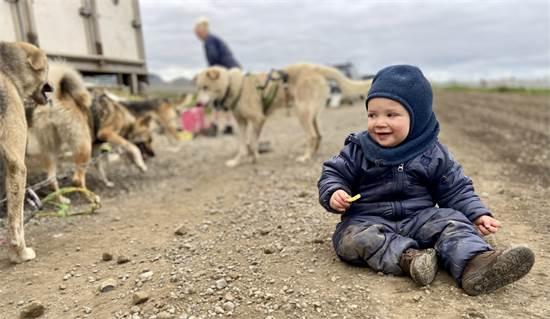 פרוסטי מתיידד עם הכלבים  / צילום: תמונה פרטית