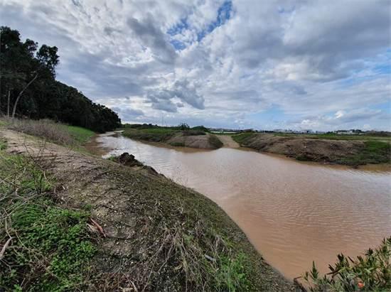נחל במתחם דרום גלילות / צילום: החברה להגנת הטבע