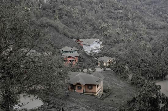 עצים ובתים שמכוסים באבק וולקני / צילום: Eloisa Lopez, רויטרס