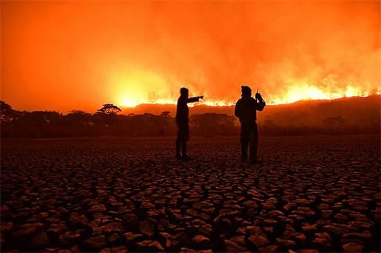 מתנדבים מביטים בשריפה שמשתוללת בשטחי הפנטנאל / צילום:  Andr? Zumak/IHP / Latin America News Agency, רויטרס