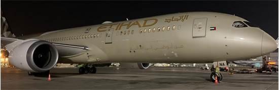 """מטוס של איתיחאד בנתב""""ג / צילום: רש""""ת, יח""""צ"""