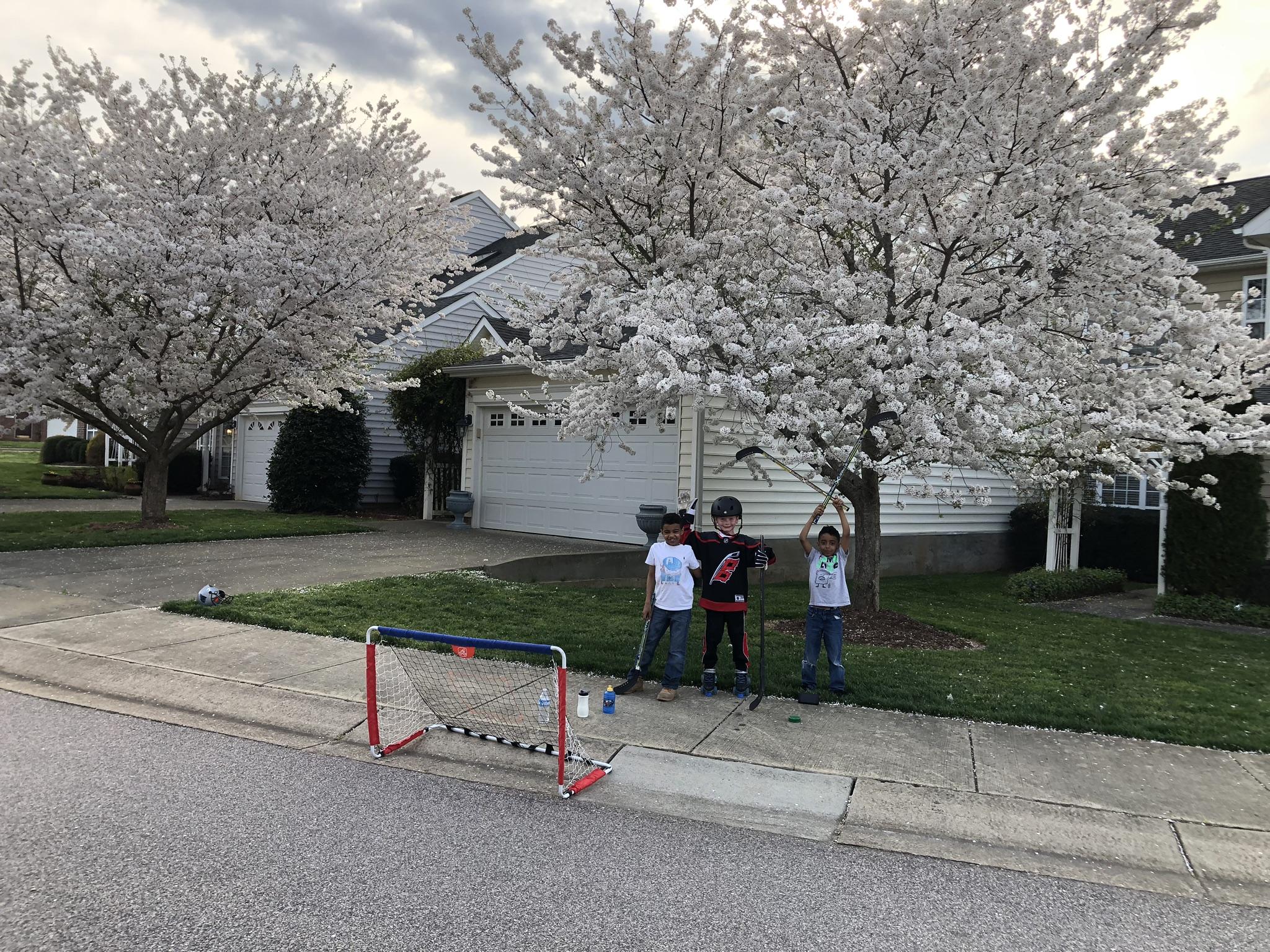 חצר הבית באביב - אדם ואיידן משחקים הוקי עם חבר / צילום: אלבום פרטי