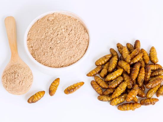 חברות מזון בעולם מאמינות שבעתיד חלבון מחרקים יהווה פיתרון לגידול באוכלוסייה  / צילום: Shutterstock/ א.ס.א.פ קריאייטיב