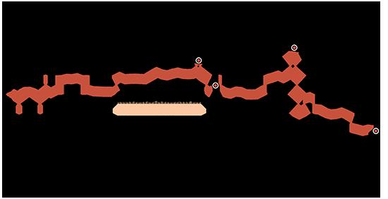 שיעור המשקיעים בשוק - משתנה מעליות מחירים ומהתערבות ממשלתית