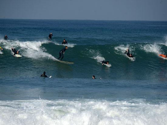 גולשים בחוף הרצליה / צילום: איל יצהר