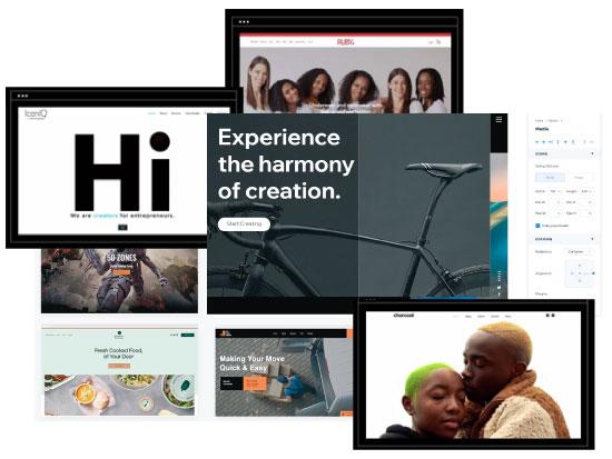 """כלים ותבניות של Wix להקמת אתרים, ודוגמאות לאתרים שנבנו ע""""י אפרו אמריקאים בעקבות המחאה / צילומי מסך מתוך אתר וויקס"""