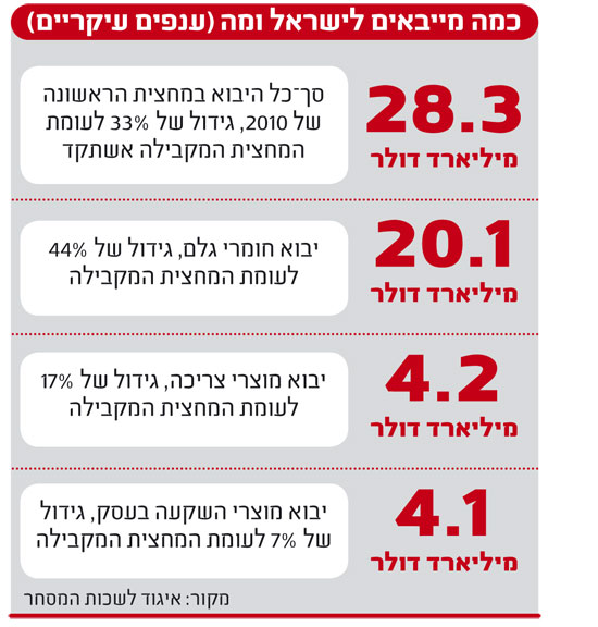 אינפו: כמה מייבאים לישראל ומה
