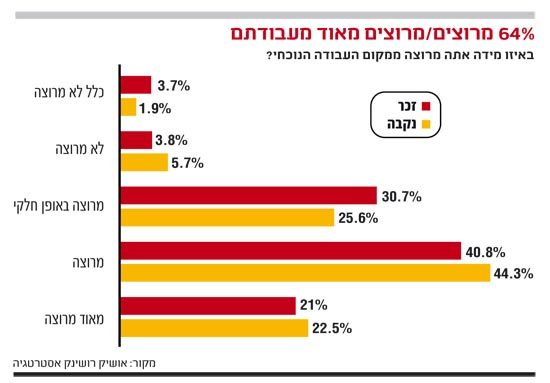 אינפו: 64% מרוצים/מרוצים מאוד מעבודתם
