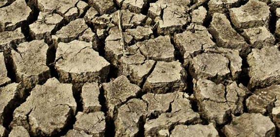 drought  picture: Thinkstock