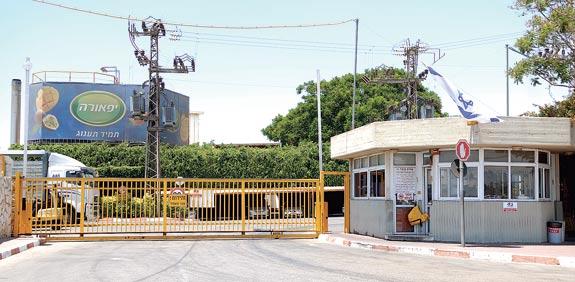 מפעל יפאורה / צילום: איל פישר