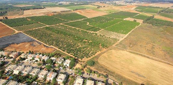 טיימינג הוא הכול: מתי נכון לרכוש קרקע חקלאית?