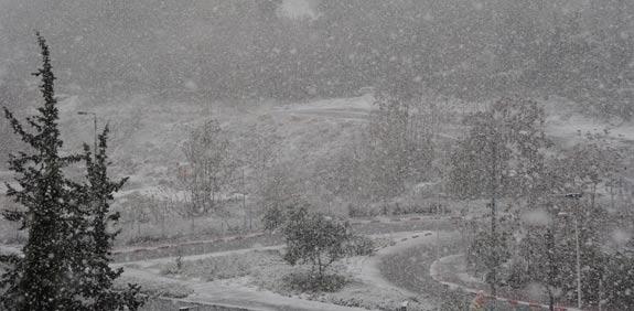 שלג בירושלים / צילום: איל יצהר