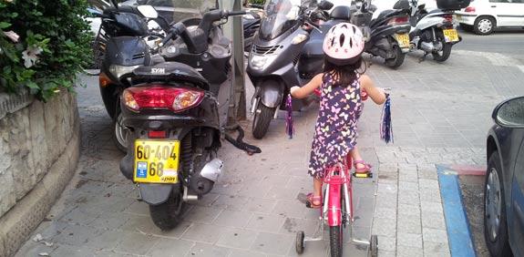 אופניים / צילום: שלומי יוסף