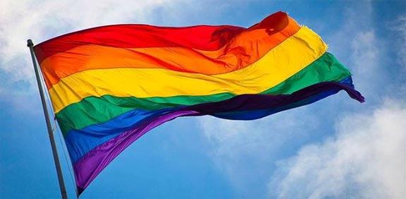 דגל הגאווה / צילום: יחצ