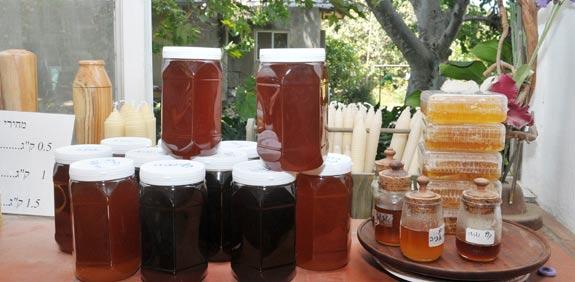 צנצנות דבש / צילום: תמר מצפי