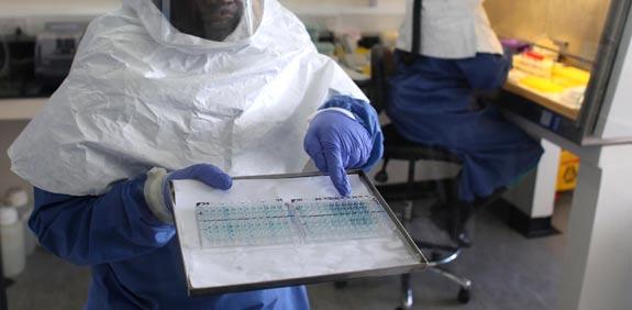אבולה / צילום: רויטרס