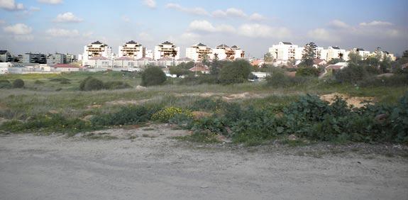 הקרקע ברחובות / צילום: באדיבות בעלי הקרקע