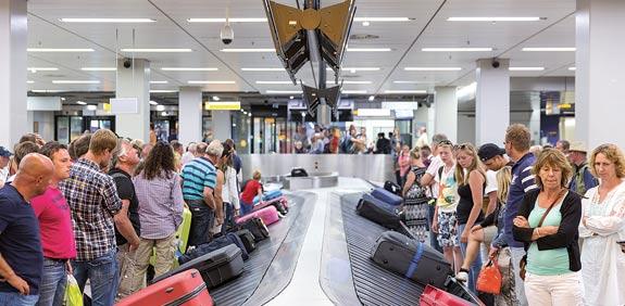 מזוודות  / צילום: Shuterstock