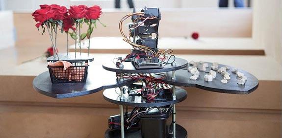פרחים וחוטי נוי / צילום: יחצ