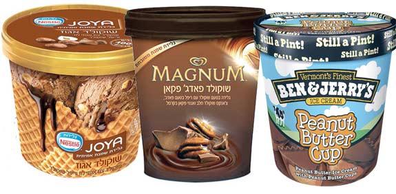 גלידות פרימיום משפחתיות / צילומים: יחצ