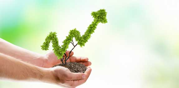 Growth Photo: Shutterstock