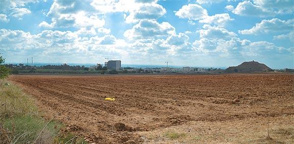 ירוק בעיניים: מתי משתנה יעוד קרקע מחקלאית למאושרת לבנייה