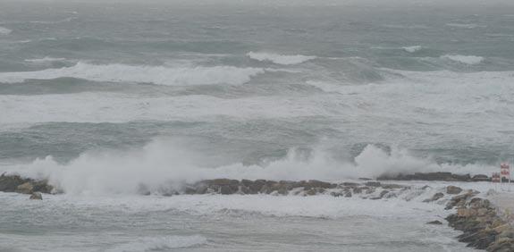 סערה / צילום: איל יצהר