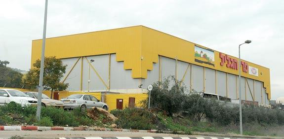 מפעל פרי גליל בחצור / צילום: תמר מצפי