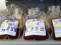מנות דם, תרומת דם, רפואה / צלם רויטרס