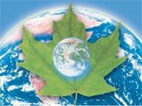 איכות הסביבה עולם גלובלי סביבה ירוקה  / צלם: save as