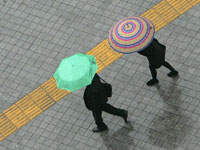 מזג אוויר, חורף, גשם, מטריה, זוג / צלם רויטרס