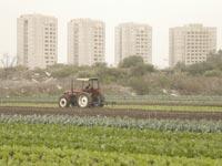 הפשרת קרקע חקלאית