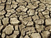 בצורת, חקלאות, משבר מים, יובש / צלם: בלומברג