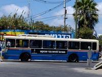 אוטובוס דן / צילום: תמר מצפי