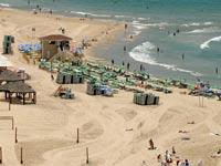 חוף הים בתל אביב / צילום: איל יצהר