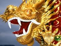 דרקון  סין אסיה / צלם:  thinkstock