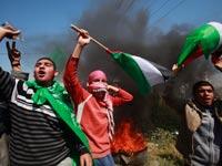 מפגינים פלסטינים / צילום: רויטרס