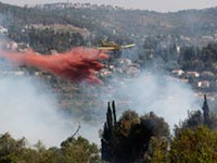 שריפה  / צלם: רויטרס