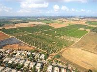 קרקע חקלאית שנמכרה בחדרה / צילום: איגל צילומי אויר