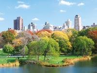 ניו יורק / צילום: shutterstock