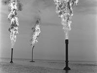"""מאגרי הנפט בסיני / צילום: לע""""מ"""