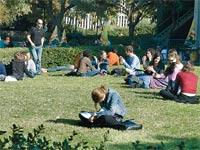 אוניברסיטת תל אביב / צילום: תמר מצפי
