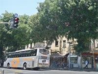 אוטובוס ברחוב אלנבי / צילום: תמר מצפי