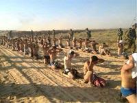 מחבלי חמאס שנעצרו / צילום: וואלה חדשות