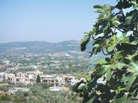 הכפר ערב אל ערמשה המשקיף ללבנון / צילום:גלית גוטמן