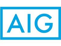 AIG לוגו / צילום: יחצ