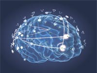 הדמייה של המוח / צילום: יחצ