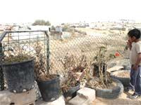 צילום של ג'מילה אבו כף מקבוצת אוהל עדות מצולמת
