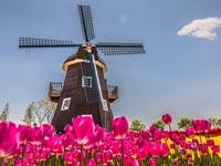 הולנד/קרדיט: שאטרסטוק